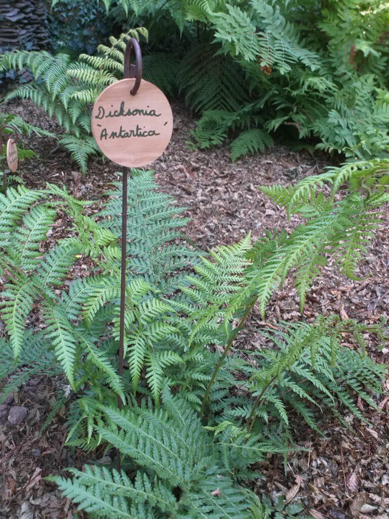 Les étiquettes en bois rondes Un jardin en pente douce
