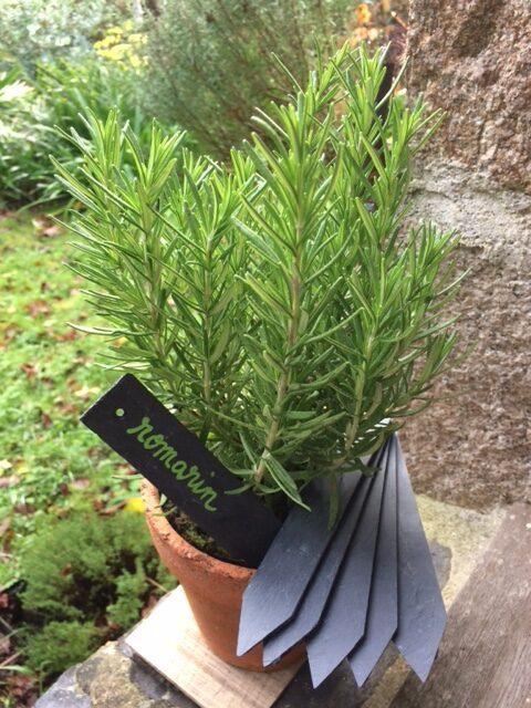 Les signets en ardoise pour jardins  un jardin en pente douce